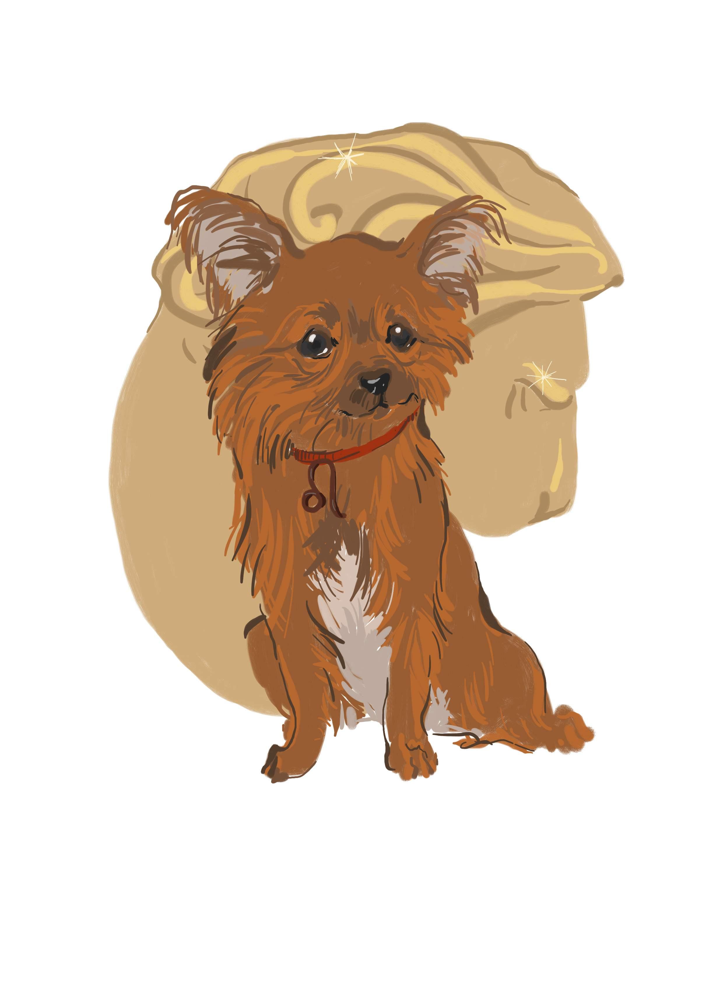 гороскоп рожденных под знаком собаки